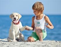 蹲在海滩边和狗握手的男孩摄影图片