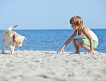 沙滩上与狗玩耍的男孩摄影图片