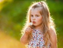 吹蒲公英的金发女孩摄影图片