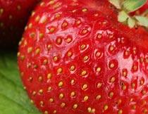 色泽诱人的草莓局部特写摄影图片