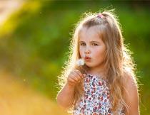 吹蒲公英的可爱小女孩写真摄影图片