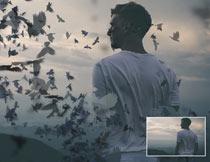 人像被乌鸦鸟群分散打散效果PS动作
