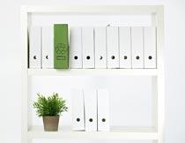 白色书架上的文件与绿植摄影图片