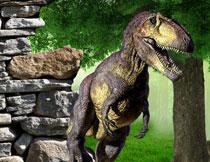 视觉冲击效果史前恐龙影楼背景图片