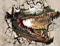 伸进墙内的凶恶大恐龙影楼背景图片