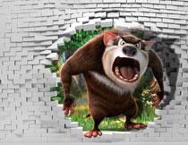 在墙外发火的棕熊主题影楼背景图片