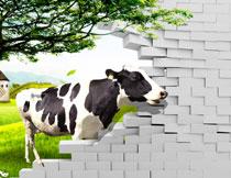 大树与农场奶牛等立体影楼背景图片