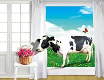 奶牛与凳子上的花篮等影楼背景图片