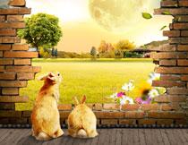 兔子与高高挂起的明月影楼背景图片