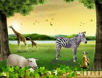 草地上的长颈鹿斑马等影楼背景图片