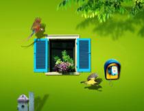 鹦鹉与在窗台上的花盆影楼背景图片
