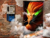 藏在门里的绿眼睛的龙影楼背景图片