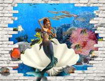 海底生物与美人鱼主题影楼背景图片