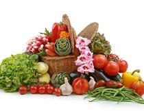 新鲜绿色有机的蔬菜篮子摄影图片