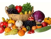 绿色有机的蔬菜水果篮子摄影图片