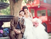 大树下的新人婚纱艺术照摄影图片