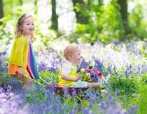 薰衣草花海中玩耍的孩子摄影图片