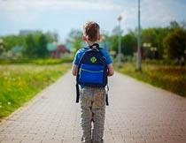道路上背书包的男孩背影摄影图片