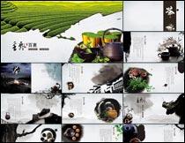 中国风茶叶文化设计模板PSD素材