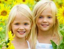 向日葵花海中的双胞胎女孩摄影图片