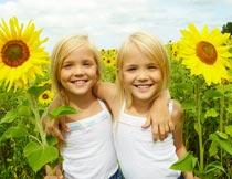 相拥在向日葵花海中的姐妹摄影图片