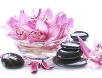 美丽的兰花与能量石特写摄影图片