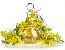 玻璃瓶中的食用油与油菜花摄影图片