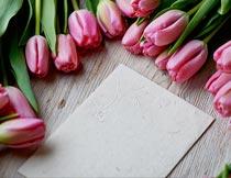 木板上的粉色郁金香和卡片摄影图片