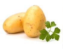 两个新鲜的马铃薯和绿叶摄影图片