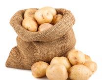 一麻袋新鲜土豆食材原料摄影图片