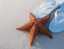 海边沙滩上的人字拖与海星摄影图片