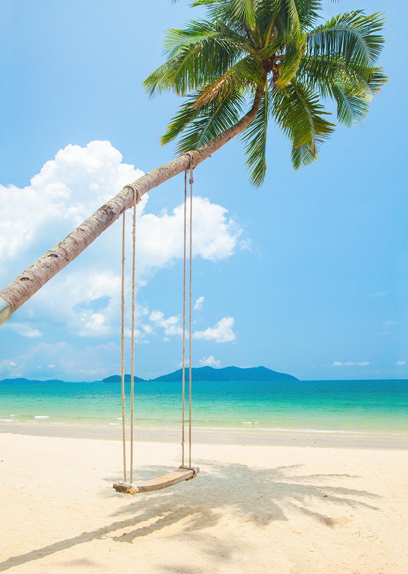 蓝天白云与海岸椰树秋千摄影图片 - 思缘设计素材共享