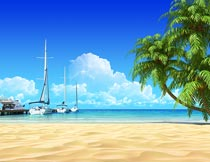 椰树与停泊在海岸边的游船摄影图片