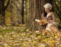 秋天坐在枫树下看书的美女摄影图片