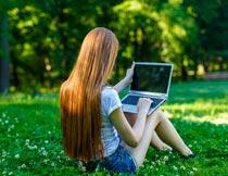 坐草地上笔记本上网的美女摄影图片