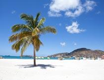 蓝天白云沙滩海岛椰树风光摄影图片