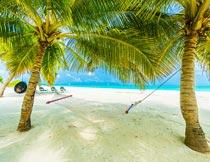海边沙滩椰树上的吊床风光摄影图片
