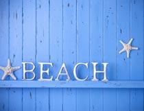 蓝木板上的英文字母与海星摄影图片