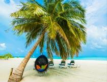 蓝天白云沙滩躺椅椰树风光摄影图片