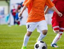 草地上踢足球的运动员局部摄影图片