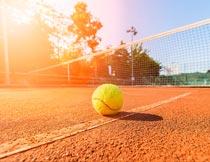 阳光下球场上的网球特写摄影图片