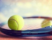黑把球拍上的黄色网球特写摄影图片