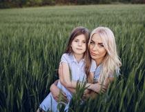青色麦田中抱着女儿的母亲摄影图片