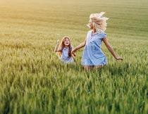 青色麦田中牵手奔跑的母女摄影图片
