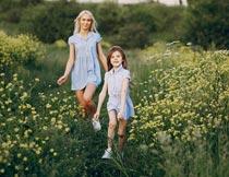 黄色花丛间开心奔跑的母女摄影图片