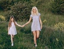 牵手走在黄色花丛间的母女摄影图片