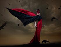 恐怖的乌鸦装饰PNG图片素材