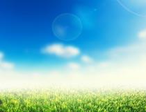 蓝天白云阳光与青草美景摄影图片