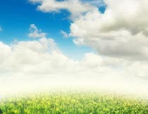 蓝天白云下的碧绿草地景色摄影图片