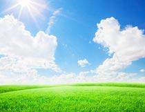 蓝天白云阳光与碧绿的草地摄影图片